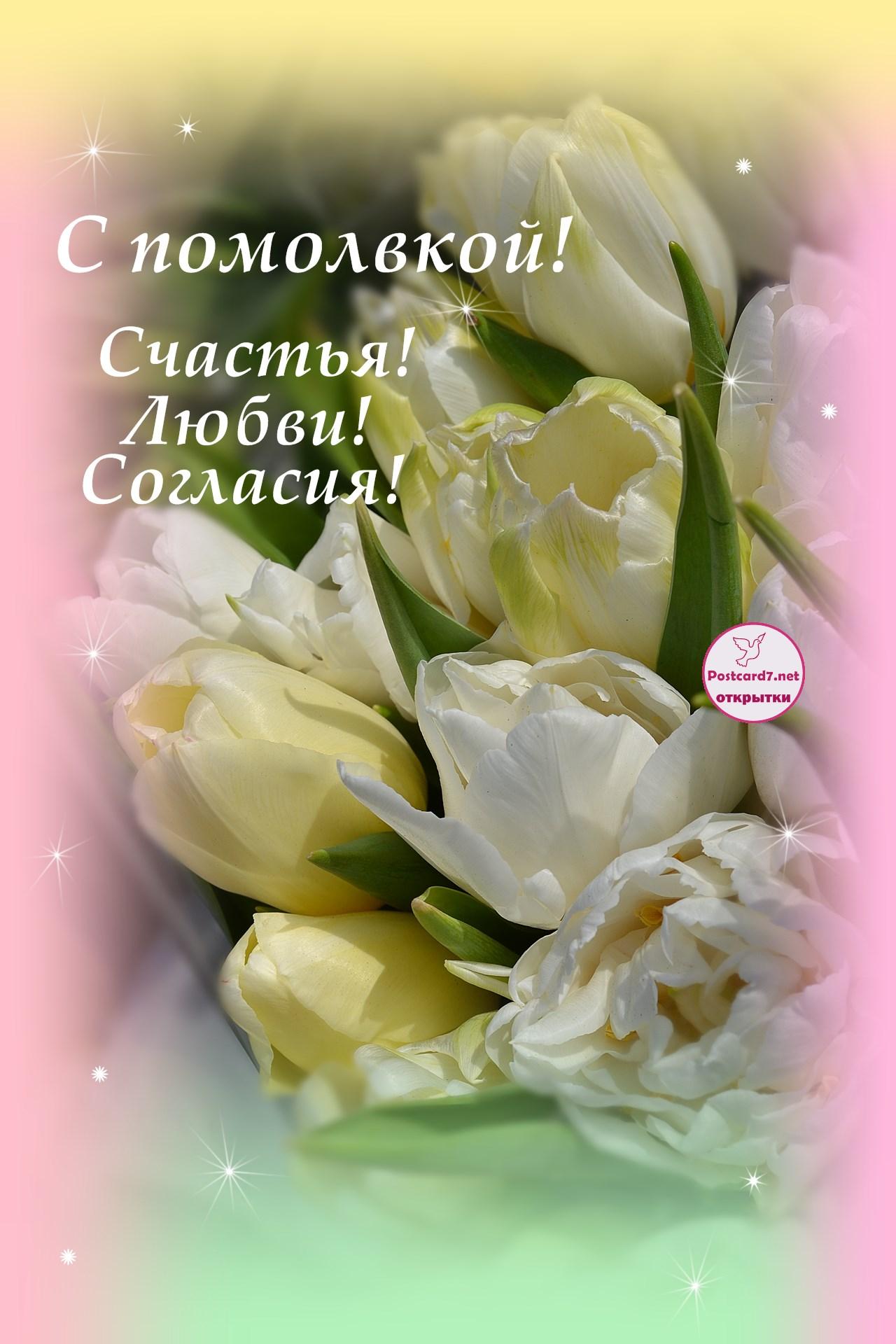 Светлые тюльпаны, открытка. С помолвкой! Мира, любви, согласия!