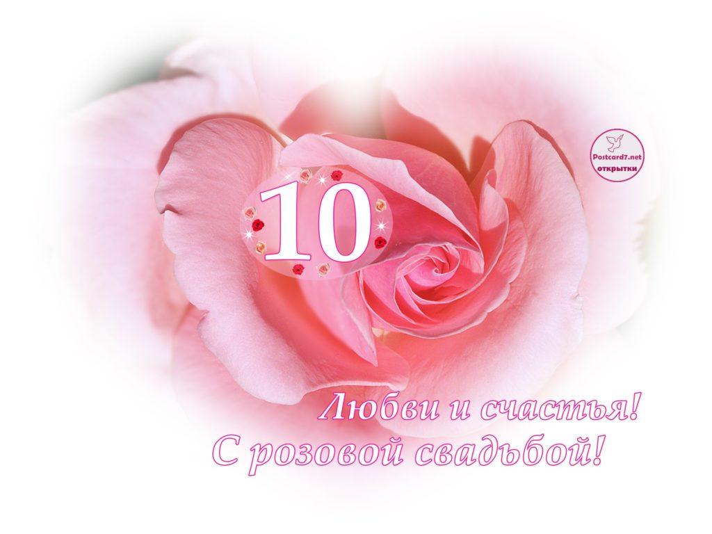 Открытка - Розовая роза - к розовой свадьбе