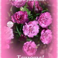 Танюша, с Днём рождения, открытка, гвоздики