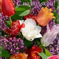 Тюльпаны с сиренью, помолвка, открытка