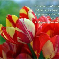 Открытка с красивыми тюльпанами и пожеланиями