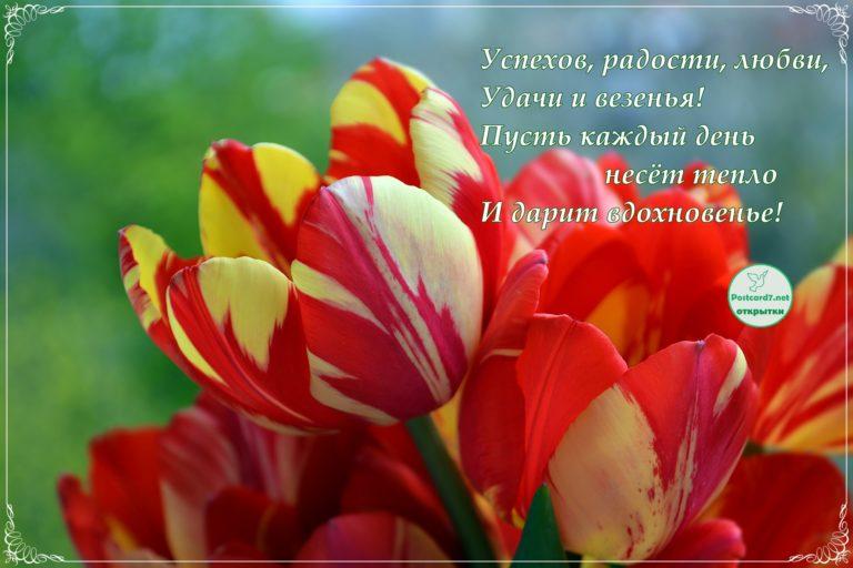 Стихи вдохновение поздравления
