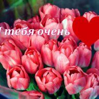 Я тебя очень люблю. Открытка с букетом тюльпанов и сердечком