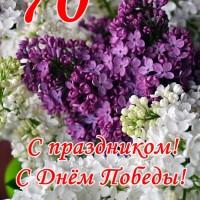 сирень, 70-летие Победы