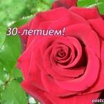 30 лет, открытка, роза
