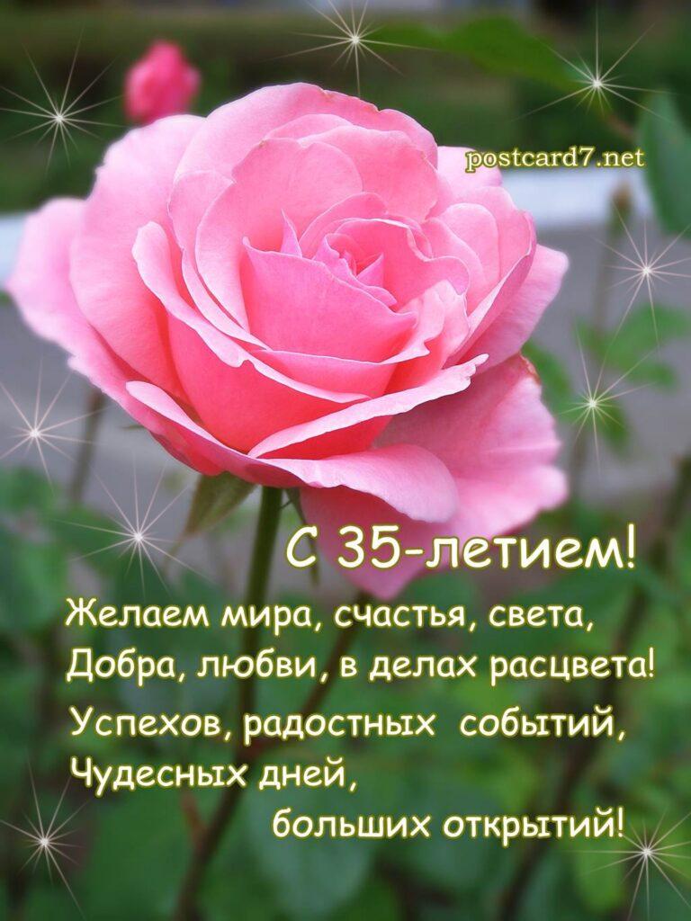 открытка роза, с 35-летием