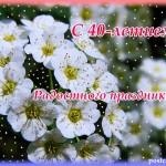 40 лет, открытка, белые цветы