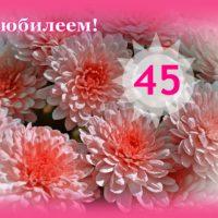 С юбилеем, 45, открытка, хризантемы