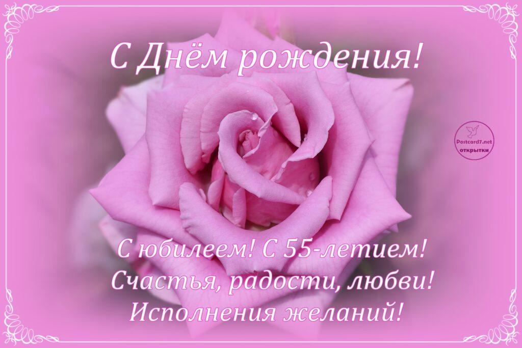 55-летие, открытка с поздравлениями, роза