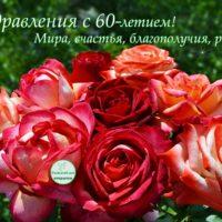 9 роз к 60-летию, открытка